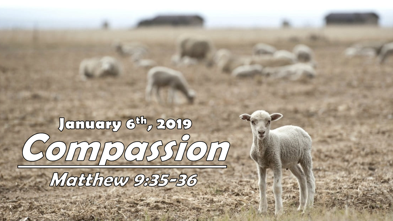 Compassion | January 6, 2019