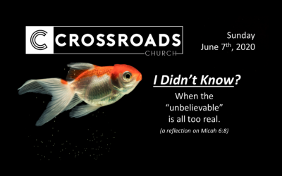 "I Didn't Know? When the ""unbelievable"" is all too real 