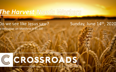 Do we see like Jesus saw? Matthew 9:35-38 | June 14, 2020