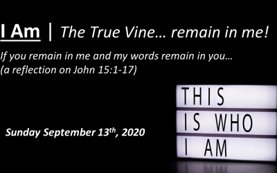 I Am | The True Vine… remain in me! | John 15:1-17 | September 13, 2020