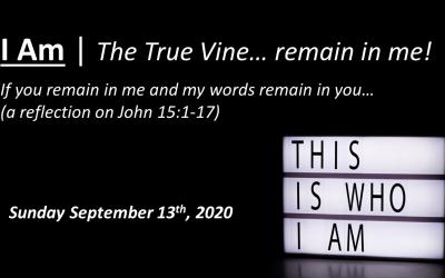 I Am | The True Vine… remain in me! | John 15:1-17 | September 13, 2020